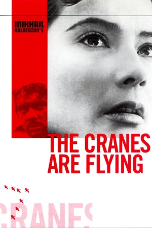 FILM: The Cranes Are Flying